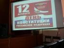 День конституции 2013